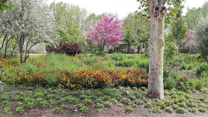 Los Jardines de la Quinta de Vista Alegre reabren al público este sábado