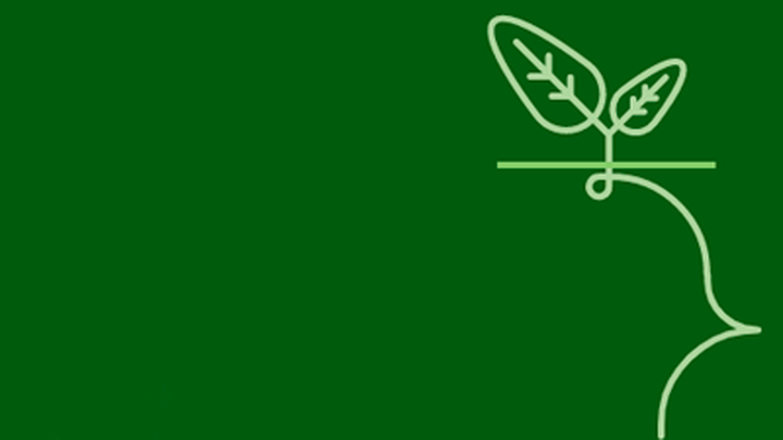replanta-madrid-dona