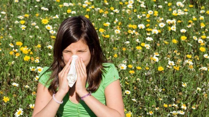 Las concentraciones de polen superarán esta semana los umbrales de riesgo en Madrid