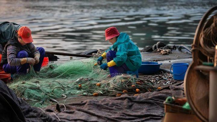 Galicia busca a jóvenes pescadores
