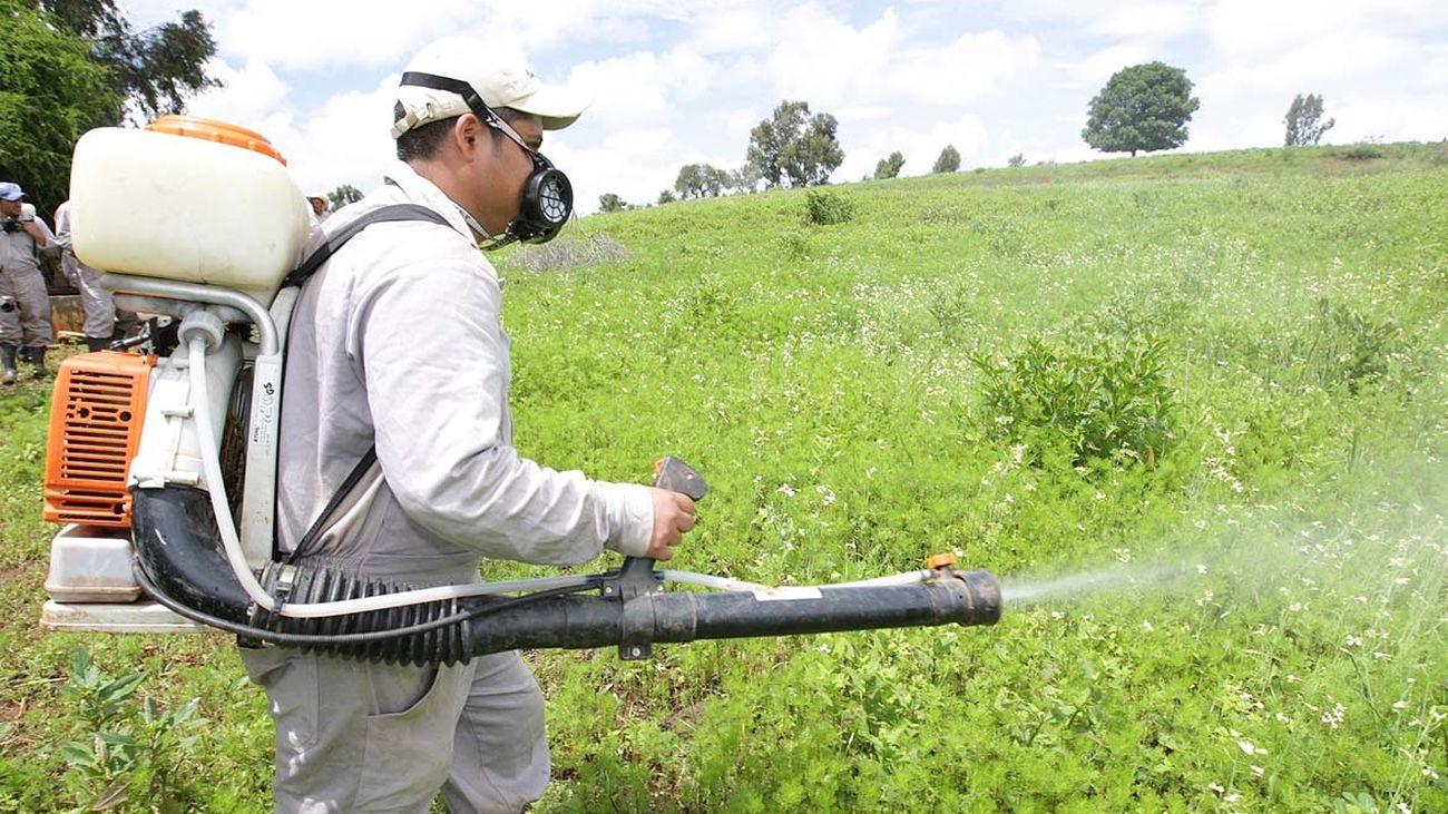 Labores de fumigación en terrenos de cultivo