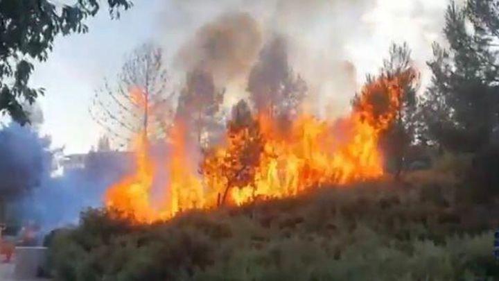 Dos jóvenes provocan un incendio en el parque Adolfo Suárez de Valdemoro