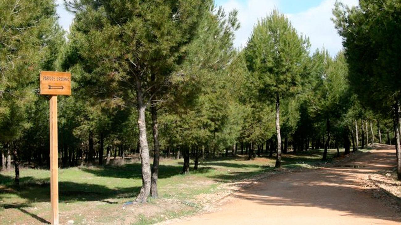 Parque del Humedal de Coslada
