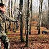 Animalistas piden cesar la caza con arco de jabalíes en San Sebastián de los Reyes