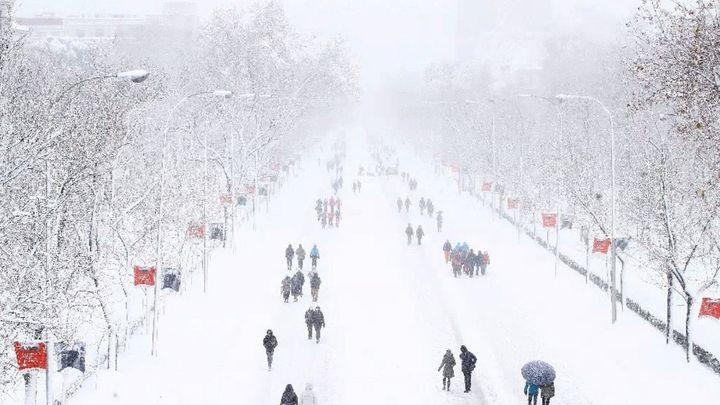 El Paseo de la Castellana cubierto de nieve tras el paso de la borrasca 'Filomena'