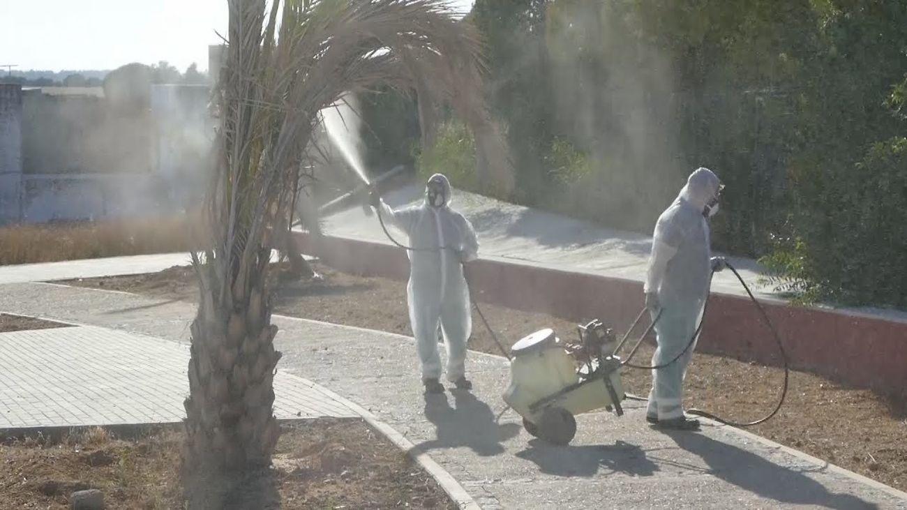 Fumigación en Coria del Río (Sevilla) para frenar la plaga de mosquitos que transmiten el virus del Nilo