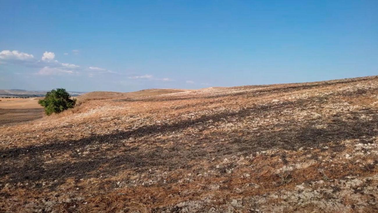 Vertidos de lodos en el Parque Regional del Sureste