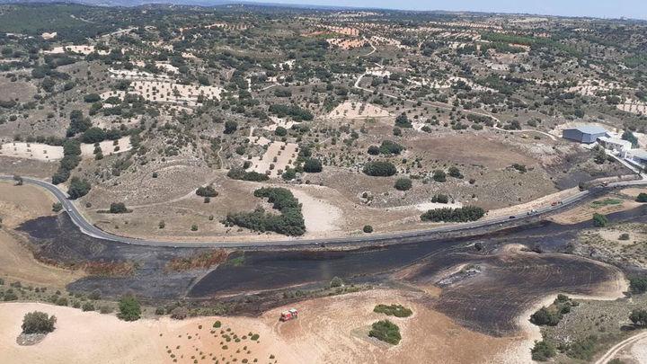 Arden 1.500m2 de pasto, algún pino y 2 coches de un concesionario en Alpedrete