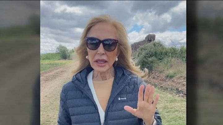 Carmen Lomana hace el Camino de Santiago y le llueven las críticas