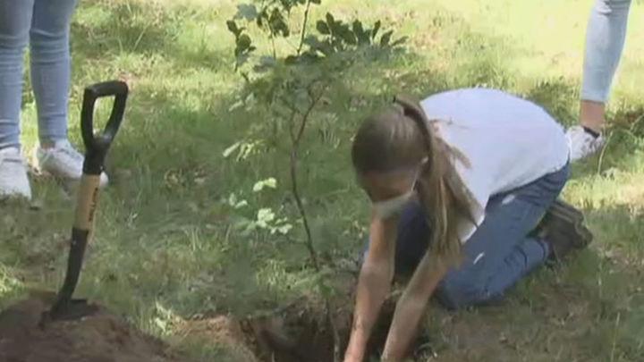 Primer acto público de Leonor y Sofía sin los Reyes para plantar árboles en el Hayedo de Montejo