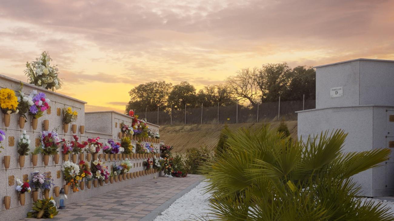 Cementerio Municipal de Nuestra Señora de  la Paz de Alcobendas