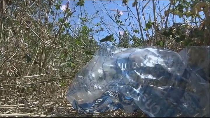"""""""Un poquito de educación ambiental"""": El mensaje de SOS Pedriza tras denunciar el deterioro de la zona"""