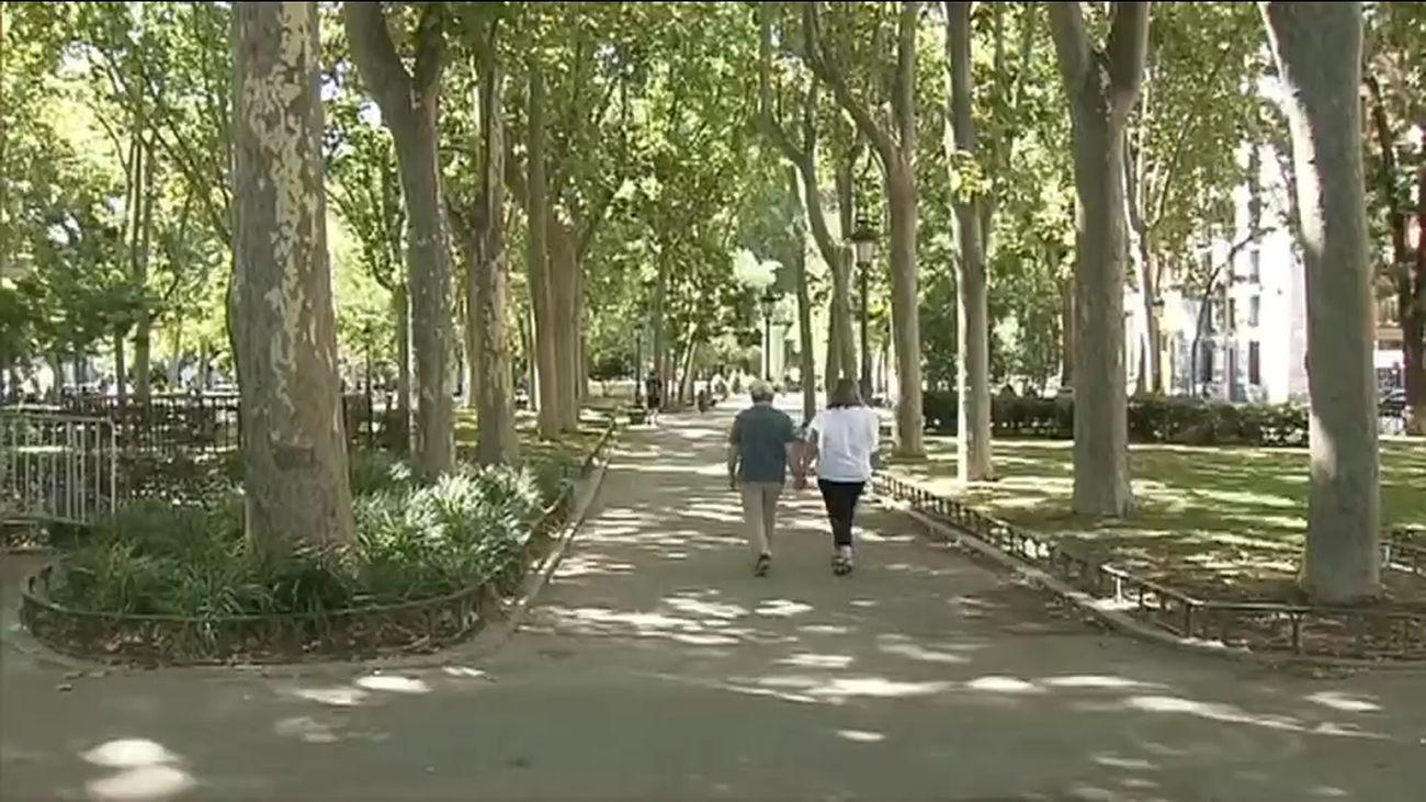 El Paseo del Prado se convertirá este jueves en un gran  patio cordobés