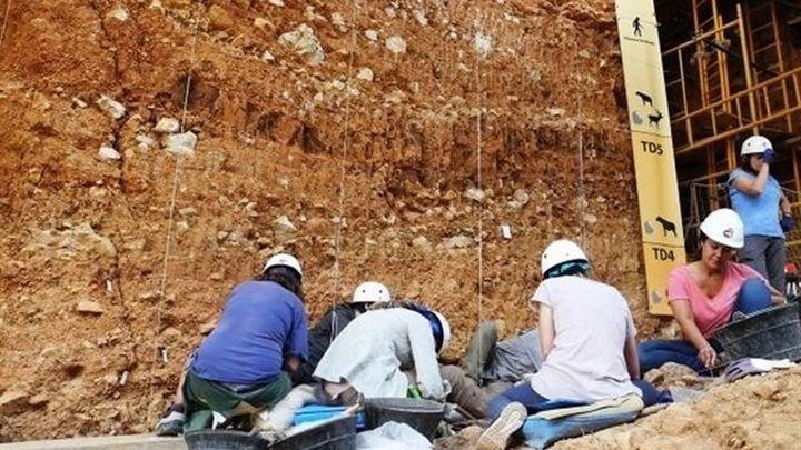 Finaliza la campaña de excavación en Atapuerca con importantes hallazgos prehistóricos