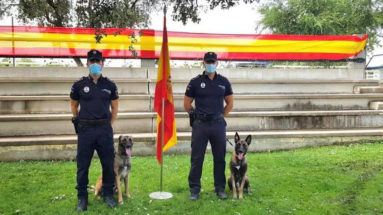 Agentes de la Policía Local de Arroyomolinos con sus perros de trabajo