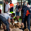 Pinto se prepara para evitar inundaciones ante episodios de lluvias torrenciales