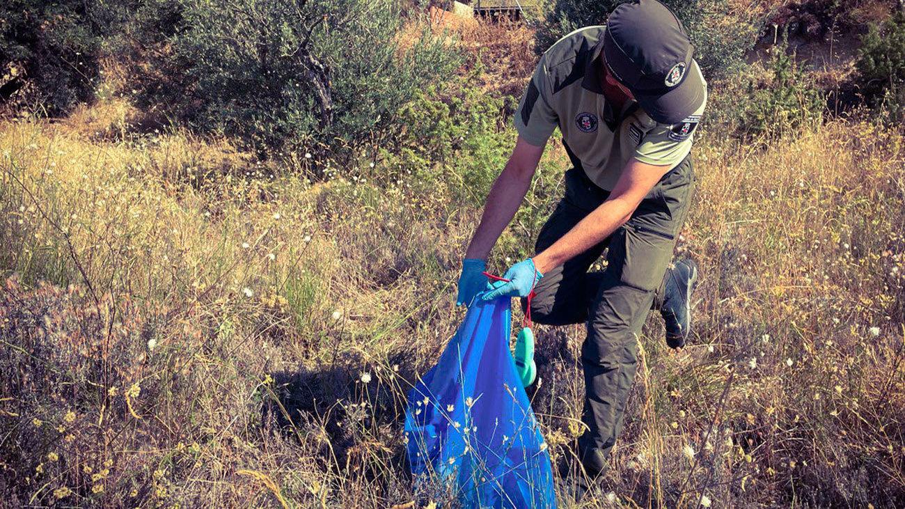 Agente forestal de la Comunidad de Madrid