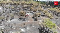 Las consecuencias del incendio del pantano de San Juan, a vista de pájaro