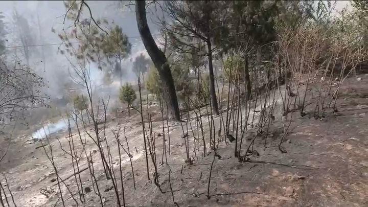 900 hectáreas afectadas por el incendio en el Tiemblo que se encuentra bajo control