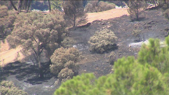 Continúan las labores de control una semana después del incendio del pantano de San Juan