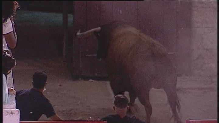 Dos heridos tras escapar un toro de la plaza de Brihuega (Guadalajara)