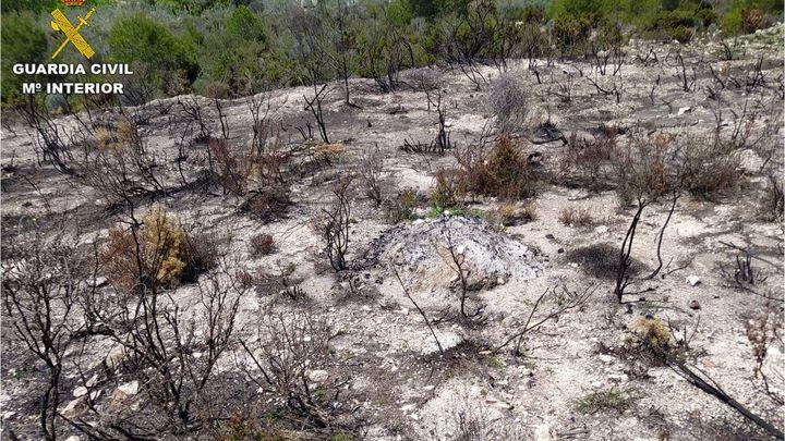 Más de 40.000 hectáreas forestales han ardido en España durante 2021