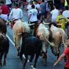 Madrid mantiene la suspensión de las verbenas, encierros y sueltas de reses en agosto