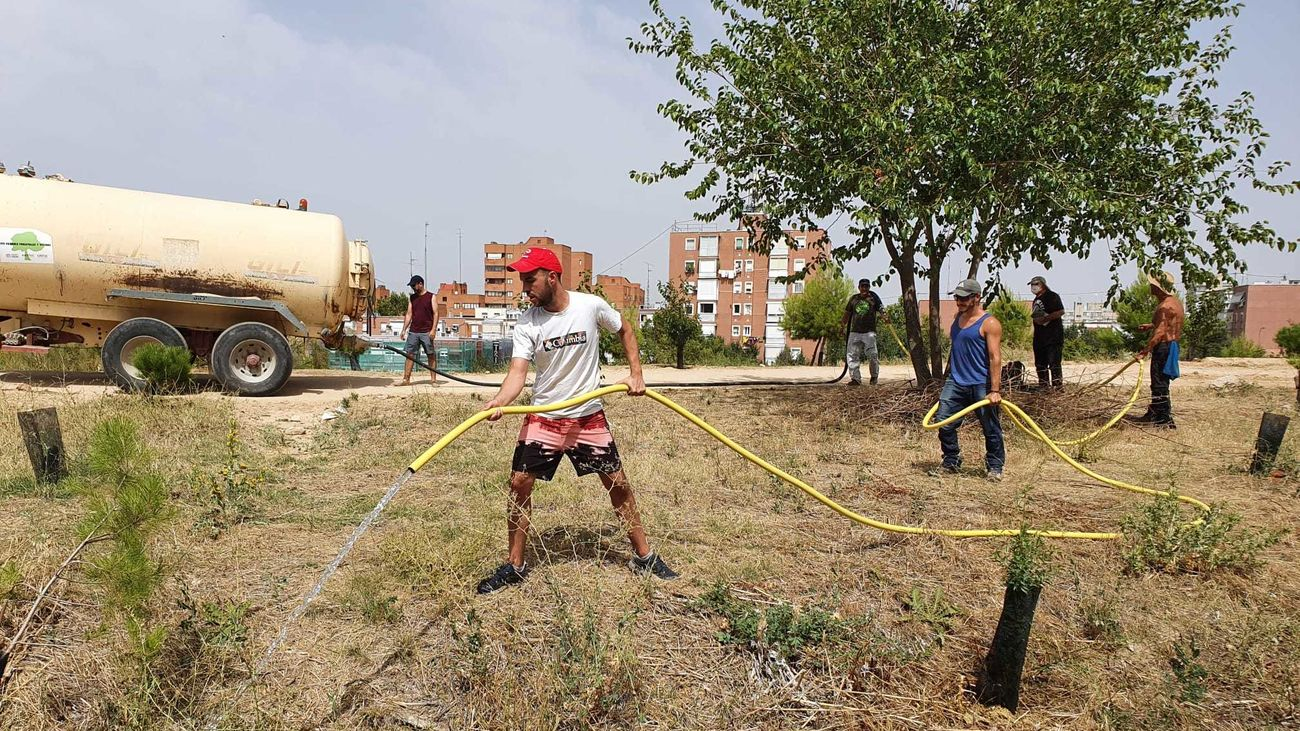 Vecinos de Campamento desafían la ola de calor para regar cientos de árboles jóvenes