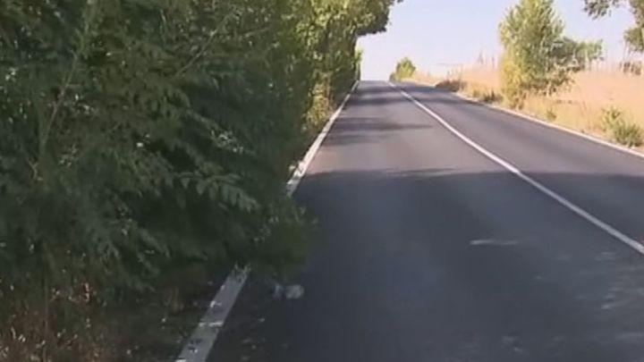 Los conductores alertan del peligro de los arbustos que invaden la carretera de Humera
