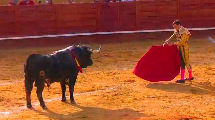 Serrano y Pachecho destacan con los encastados 'cebadas' en Cenicientos (1ª Parte)