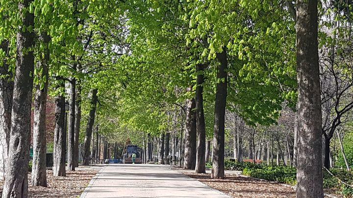 Polémica en redes sociales por el balizamiento de los parques de Madrid en la ola de calor