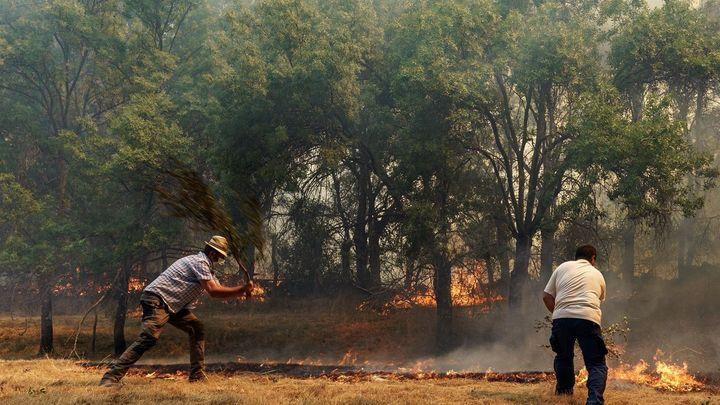 Madrid ayuda en la extinción del incendio en Ávila, que ha quemado ya al menos 12.000 hectáreas