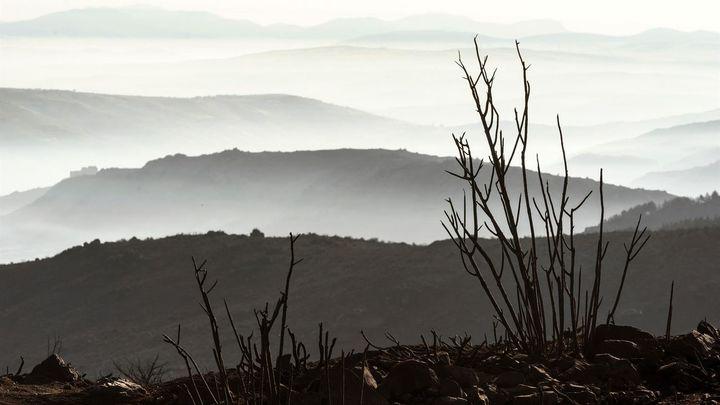 Estabilizado pero activo el incendio de Ávila que ha arrasado más de 20.000 hectáreas