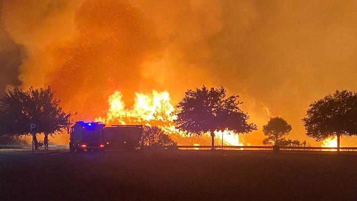 Se complica la extinción del incendio de Sierra Bermeja, en Málaga