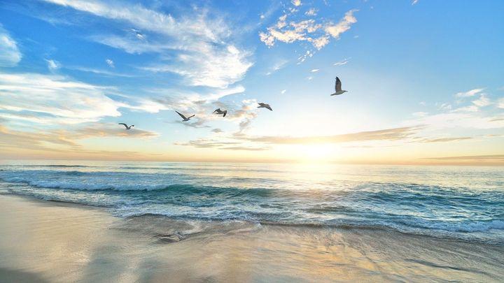 """La conocida """"playa de Europa"""" se encuentra en..."""