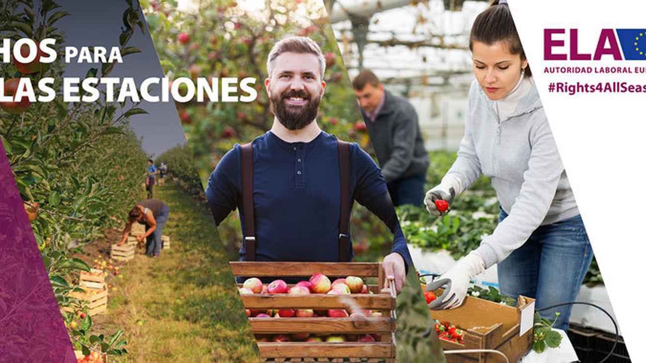 Madrid acogerá el 20 de septiembre el acto de la campaña europea sobre derechos de los trabajadores temporeros