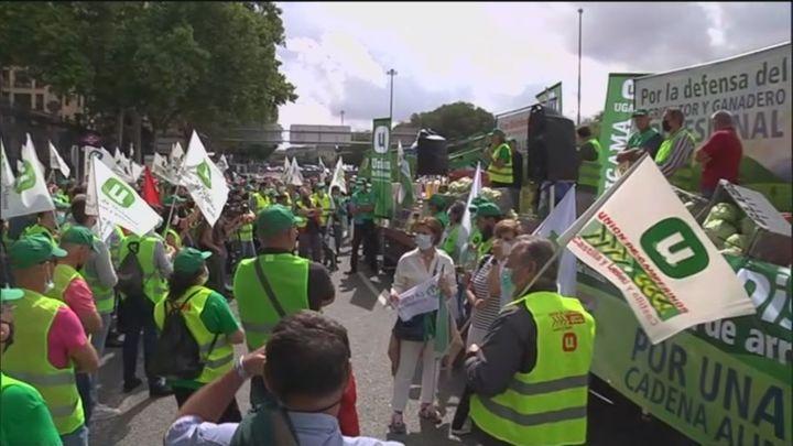 El sector del campo vuelve a manifestarse en Madrid para pedir ayudas y precios dignos