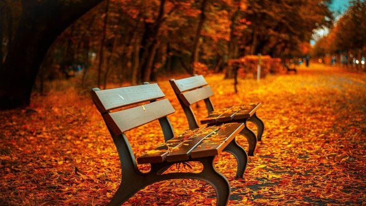 Pautas para entrar con buen pie en otoño
