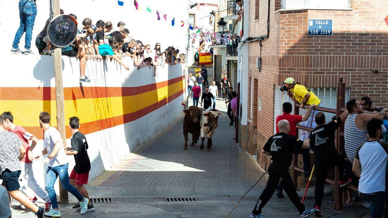 Campo Real celebrará sus fiestas patronales y encierros taurinos tras levantarse las restricciones