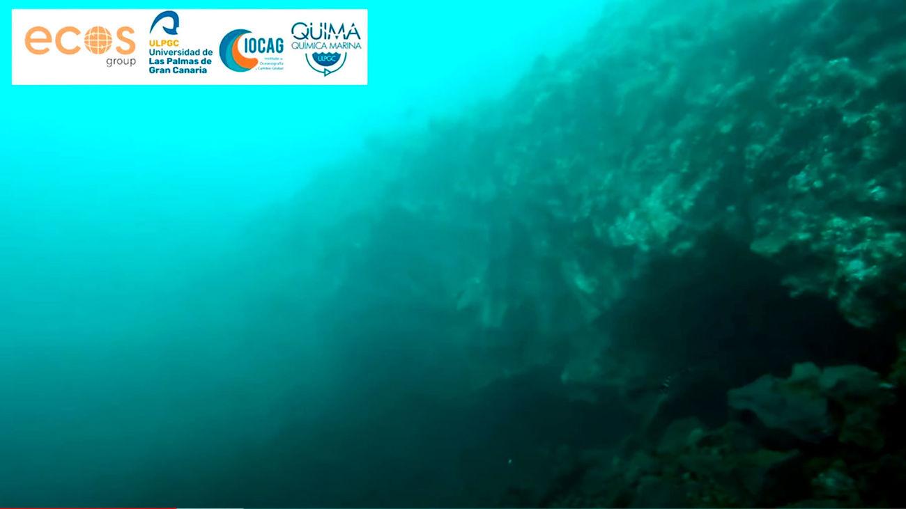 Consiguen las primeras imágenes submarinas del delta lávico de La Palma