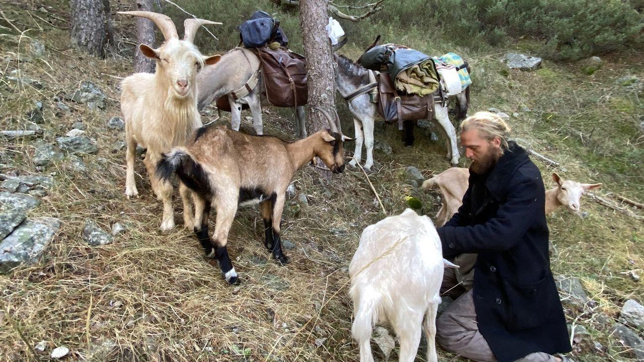 Un peregrino francés atraviesa la Sierra de Guadarrama con sus burros y sus cabras
