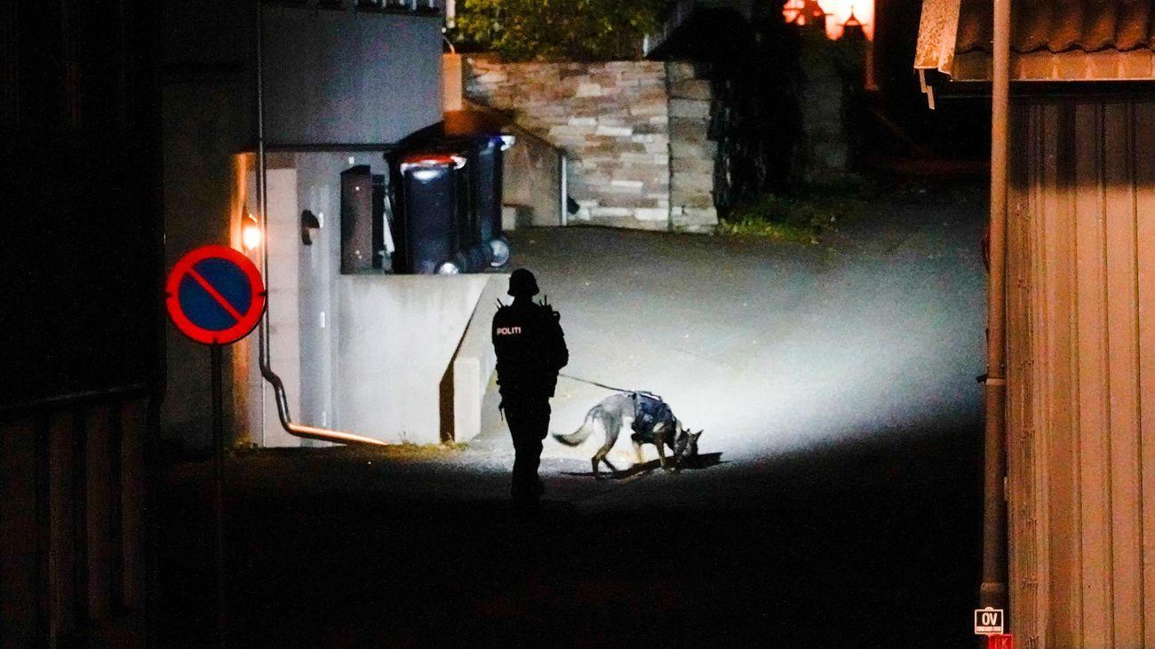 Un hombre mata con un arco y flechas a cinco personas en Noruega