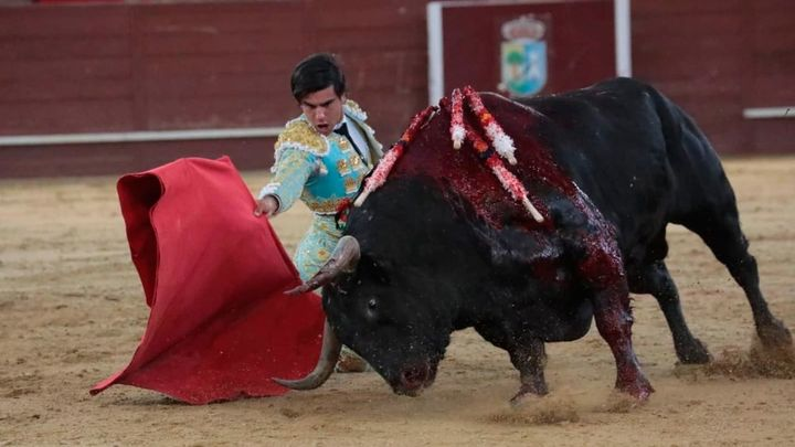 Fernando Adrián corta dos orejas a un gran 'Acomplejado' en Valdemorillo (1ª parte)