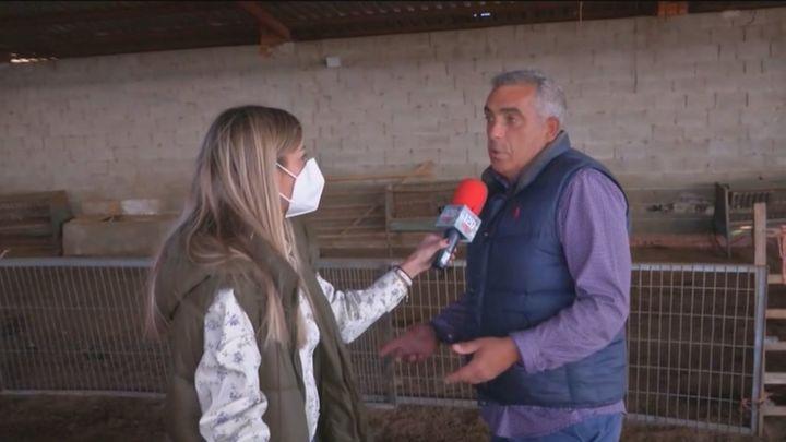 Los ganaderos de Madrid, hundidos por los precios de la luz y el pienso, advierten del cierre de granjas